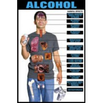Harmful Effects Alcohol Chart