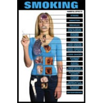 Harmful Effects Smoking Chart