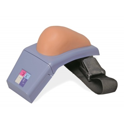 Intramuscular Injection Simulator - Upper Arm