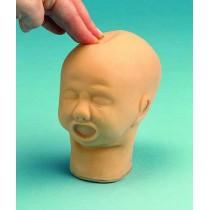 Foetal Head Palpation Model