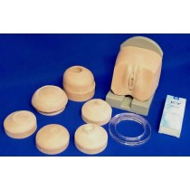 Cervix Examination Set