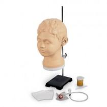 Diagnostic/Procedural Ear Trainer